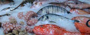 Kaltseefisch, Omega-3, Kälte besser vertragen